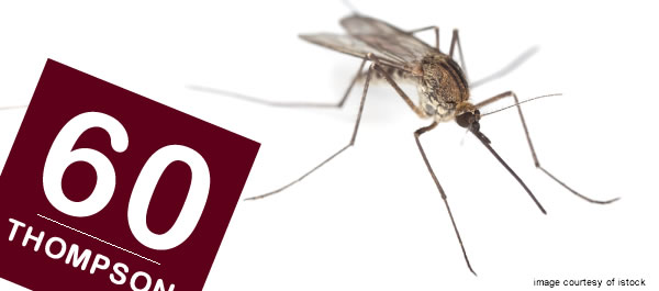 Brisbane City Council Sprays For Mosquitoes
